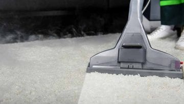 Tile and grout cleaning Pest control Carpet/upholstery cleaning